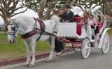 Cinderella Carrage