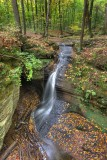 Nelson Ledges-Small Falls *.jpg