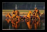 Versailles gardens (EPO_5646)
