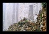 Chateau de Domfront (EPO_12250)