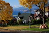 suburban autumn