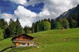Outstanding in its field! Les Diablerets