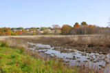 Haverhill Wetlands Drained Looking NE.jpg