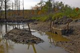 Haverhill Wetlands Mess At Outflow.jpg