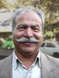 Educating Ghazanfar