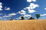 Wheat Country Of Douglas County,,
