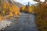 Looking Down River From Roaring Creek Bridge
