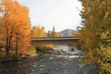 Entiat River Near Hatchery Bridge ( Roaring Creek Area )