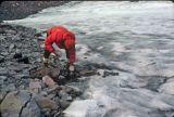 Filling Water Bottles Off  Packwood Glacier Run Off ( Sept. 1977)