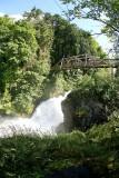 Tumwater Falls ( Dechute's River Washington )