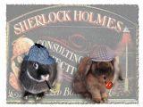 Zoe  - Sherlock Holmes & Zin - Dr. Watson