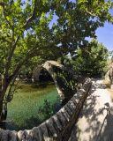 Boidomatis River  (Kostas Sarris)