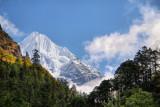 Gauri Shankar 7145 m