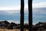 Kapa'a Beach Park