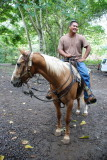 Waipi'o Valley Horseback Ride Guide