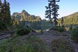 Upper Lena Lake area