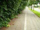 13/6/2008 : Woluwe-St-Lambert, Boulevard de la Woluwe