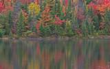 Algonguin Park - Peck Lake Trail