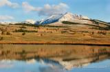 Swan Lake Reflection