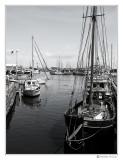 04 - Fishing
