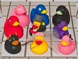 9 duckies in our bathroom