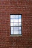 window on the world 299