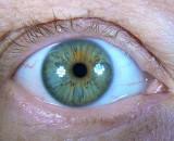 P1280233 Eye LED light.jpg