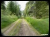 Speed3.jpg