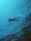 mira la Miriam!!! ja l'hem trobada!!! i és que la nena maca ara ja és Open Water però no quan vem fer la inmersió!