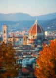 Fall Over Firenze