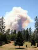 Humboldt Fire, Paradise, CA - June 2008