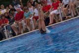 20080726 En Route vers Pékin - Equipe Olympique de nage synchronisée  de Plongeon 0035.jpg
