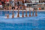 20080726 En Route vers Pékin - Equipe Olympique de nage synchronisée  de Plongeon 0062.jpg