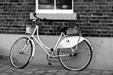 fiets / bicycle