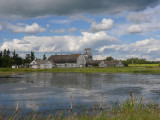 Old farm-pond.jpg