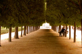 le jardin Paris