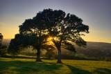 Sunset in the Culm Valley - Devon