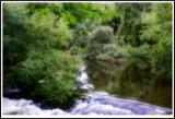 DSC08230 enh blur.jpg