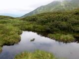 l'étang bleu 2