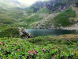 l'étang bleu - Altitude 2132 m.