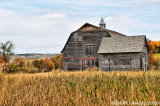 Barn & Shed
