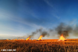 Stubble Burning At Sunset