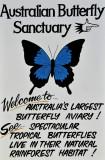 Butterfly Sanctuary