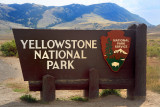 Yellowstone National Park, 2009