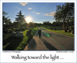 Marcher vers la lumière ...