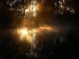 Amazing Light