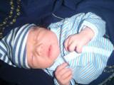 Auguste 15 nov 2009