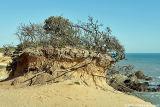 2006 - Erosion