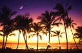 Maui Moonlight