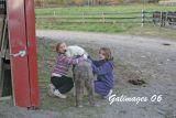 Foxmoor--IMG_2427.jpg